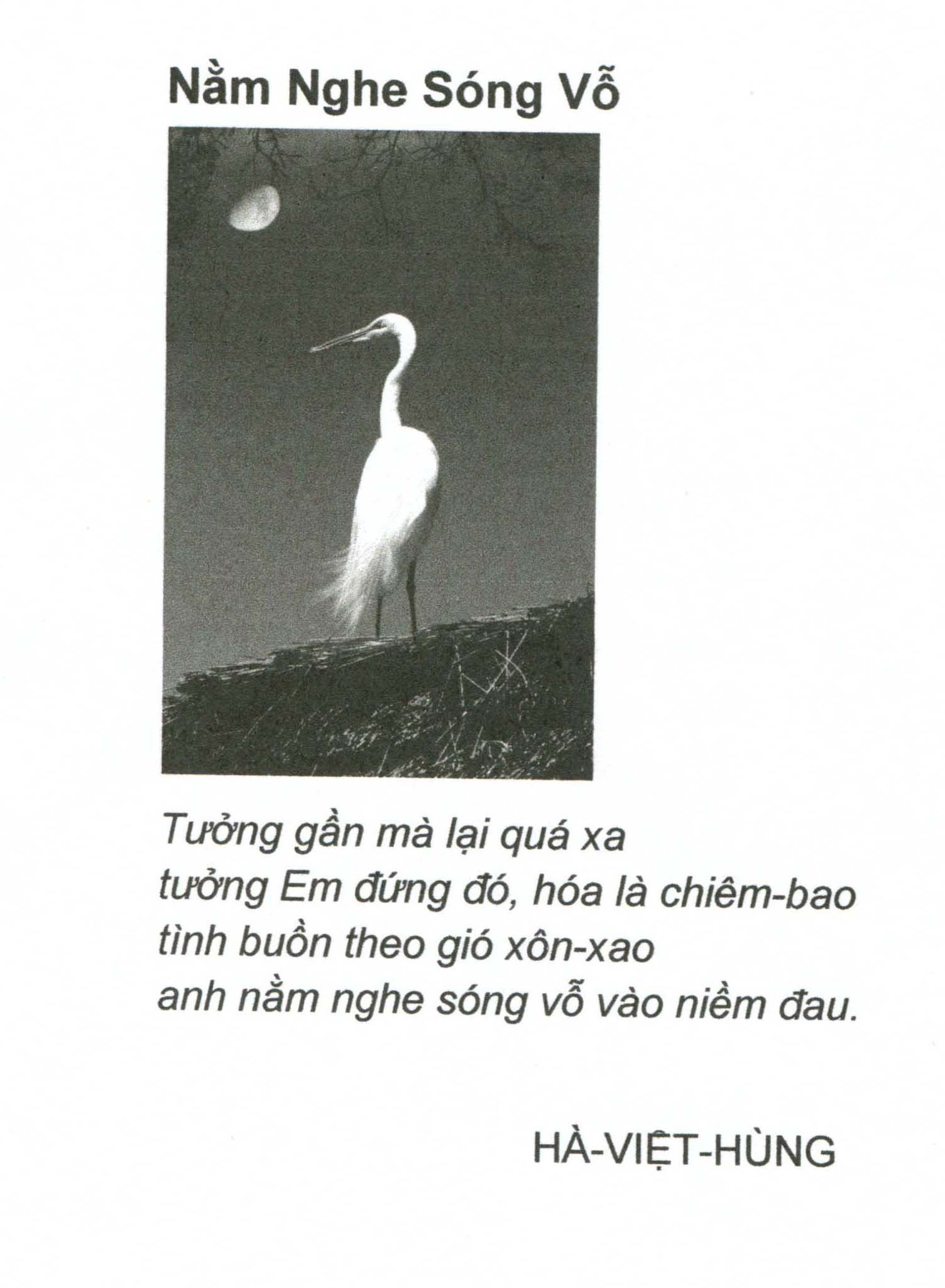 nam nghe song vo